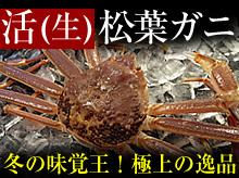 活(生)松葉ガニ