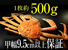 茹で松葉ガニ(約500g・甲幅9.5cm以上保証)