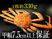 茹で松葉ガニ(約330g・甲幅7.5cm以上保証)