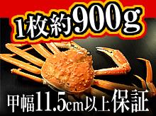 茹で松葉ガニ(約900g・甲幅11.5cm以上保証)