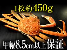茹で松葉ガニ(約450g・甲幅8.5cm以上保証)