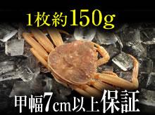 活セコガニ(150g・甲幅7cm以上保証)