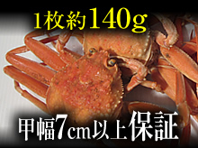 茹でセコガニ(140g・甲幅7cm以上保証)